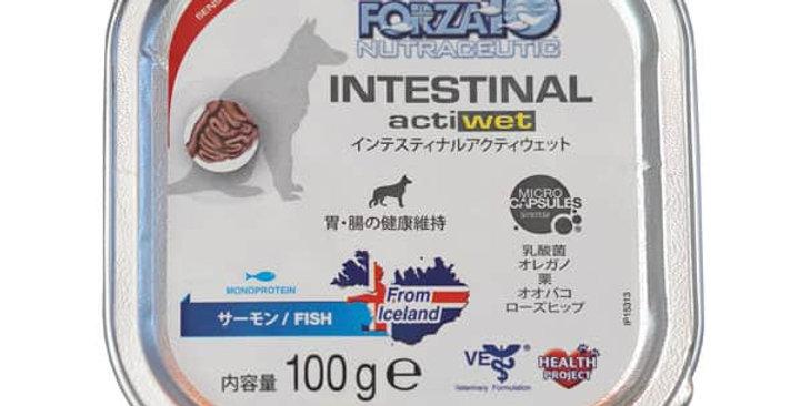 【Forza10】フォルツァディエチ インテスティナル アクティウェット 胃腸ケア 100g