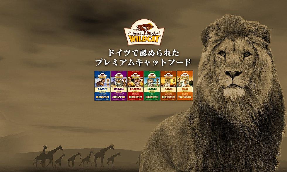 WildCat-top.jpg
