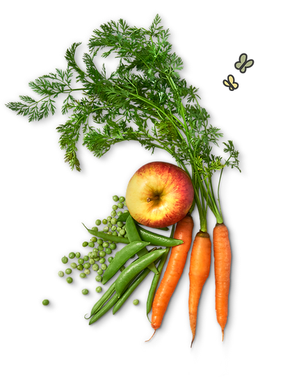 Banner Image Carrot Apple Peas butterfli