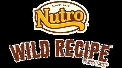WIlD RECIPEのロゴ