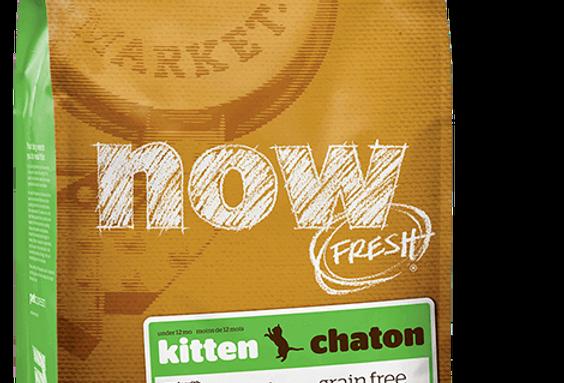 NOW FRESH Grain Free キトン