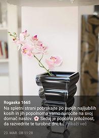 Screenshot_20200604_162630.jpg