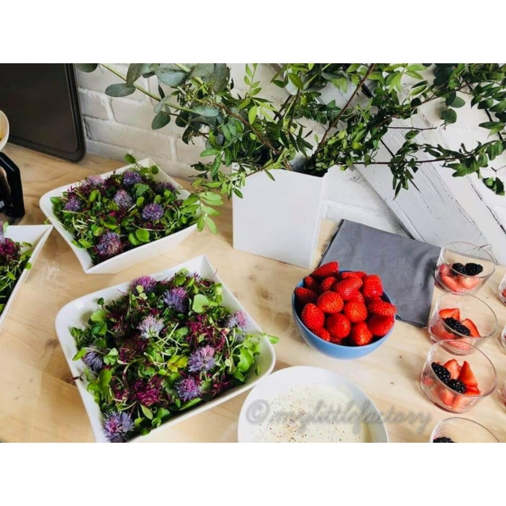 Salade jeunes pousses et fleurs