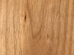 WHITE WALNUT