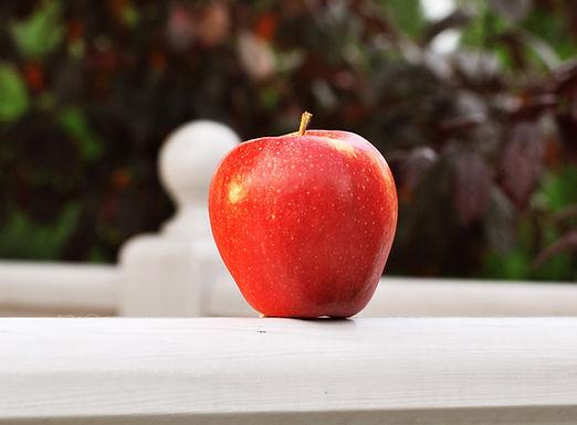 Pinova apple by Green Farm for export