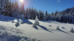 Schneelandschaft im Gaisrückengebiet