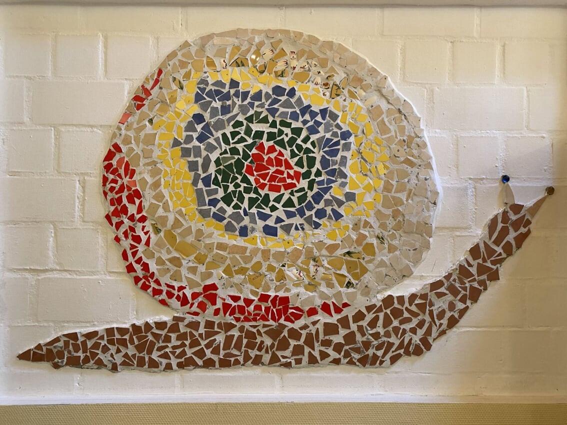 Mosaikschnecke