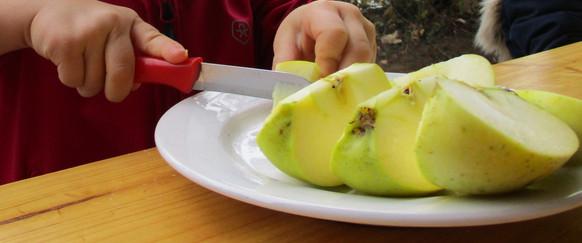 Äpfel_kleinschneiden_für_den_Apfelsaft