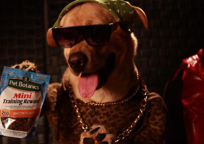 Botanics Dog Food Commercial
