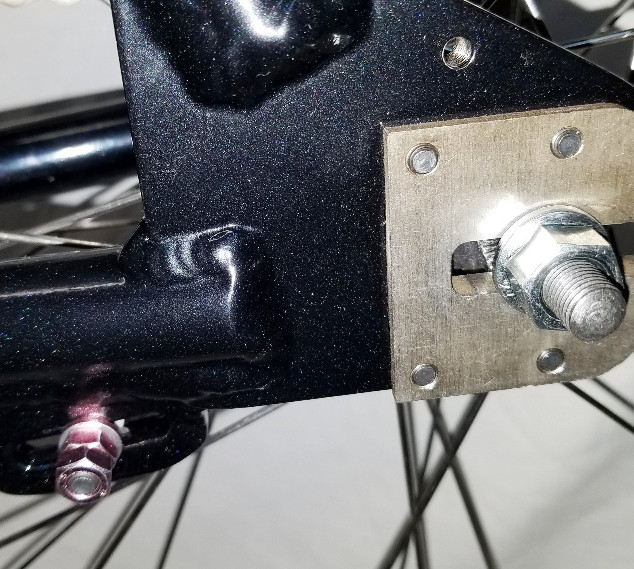 Coaster brake bike