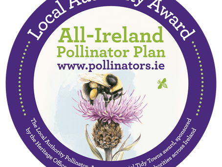 Calling All Tidy Towns Groups - Local Authority Pollinator Award
