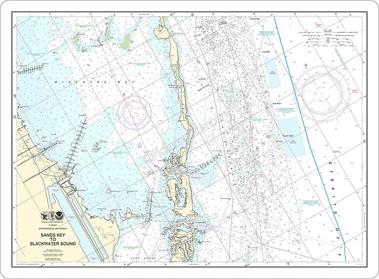 Nautical Chart 11463 'Sands Key to Blackwater Sound' Placemat