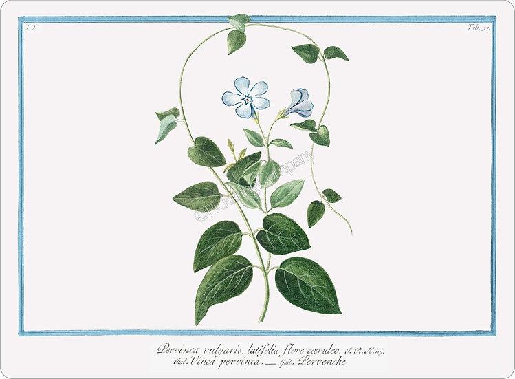Bonelli's Botanicals 'Vinca Minor or Periwinkle' Placemat