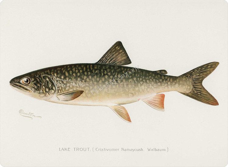Denton 'Lake Trout' Placemat