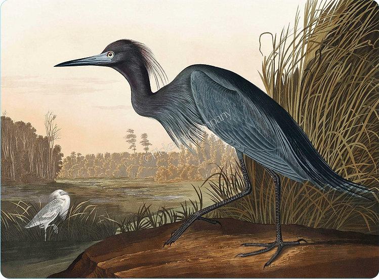 Audubon 'Blue Heron' Placemat