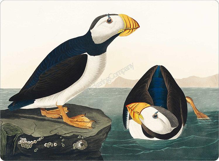 Audubon 'Large-billed Puffin' Placemat