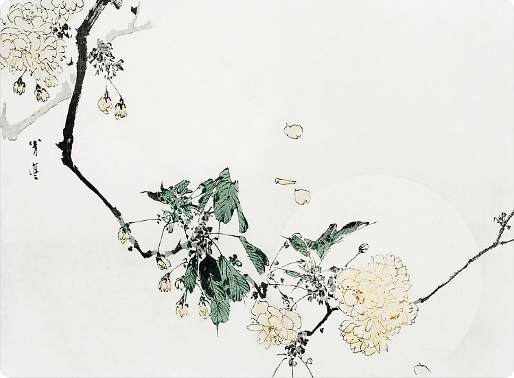 Seitei 'White Cherry Blossom' Placemat