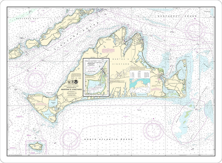 Nautical Chart 13233 'Martha's Vineyard' Placemat