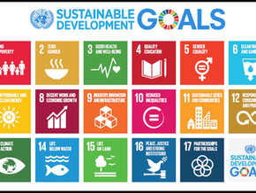 What are the SDGs and How They Are Connected to My Business