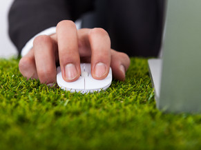 TIPS to Green Your Business