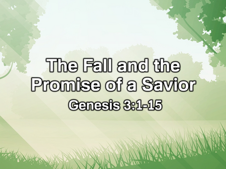 The Fall and the Promise of a Savior (Genesis 3:1-15) - 8/9/20