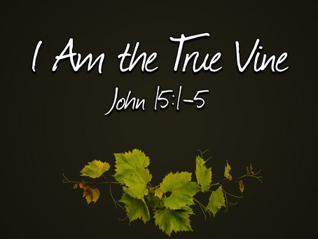 I Am the True Vine (John 15:1-5) - 11/29/20