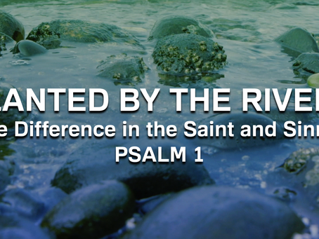 Planted by the Rivers (Psalm 1) - 5/17/20