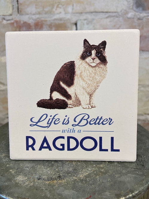 Life is better with a Ragdoll