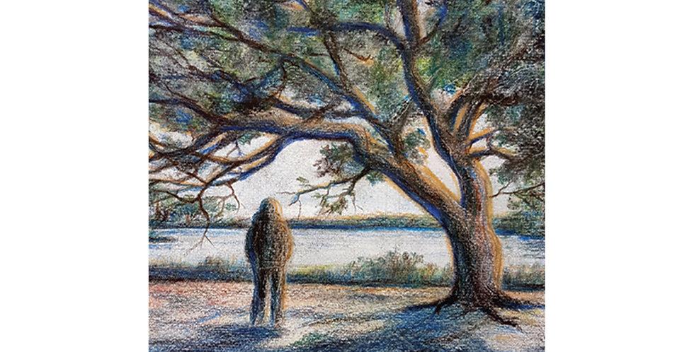 Shadows, poems by Gene Kimmet