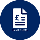 What is Level 3 Data Icon