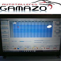 Software para inyeccion GLP