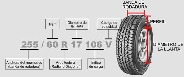 web-grafico-medidas1.jpg
