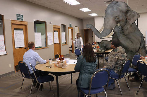Hackel Construction, Inc. - the elephant in the room