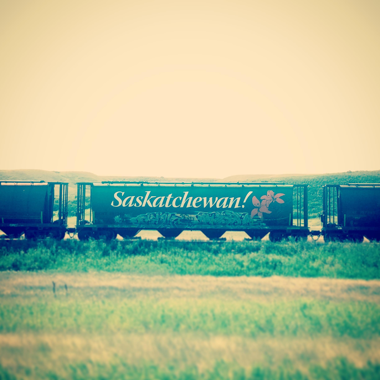 Trains and Graffiti
