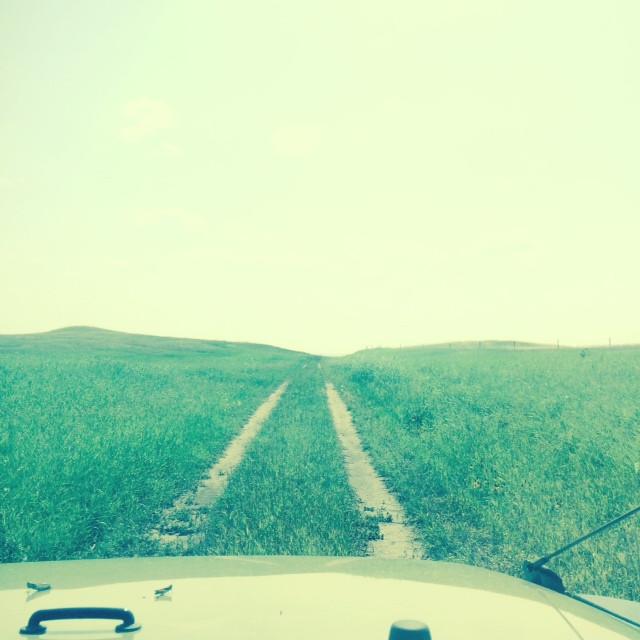 TCAT trail.JPG