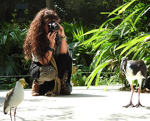 Audubon Aviary 4.JPG