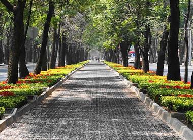 Pomen zelenih površin v mestu