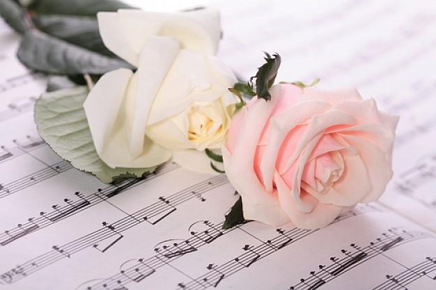 rosa y partitura