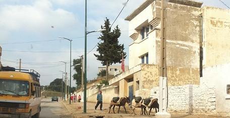 Lemnis Public Lighting levert led verlichting aan Marrokaans bedevaartsoord