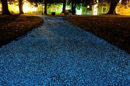 Brabant start pilot met glow in the dark voor betere zichtbaarheid fietspaden