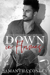 Down in flames(2019)ebook.jpg