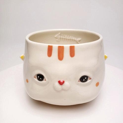 Cat Bowl-2