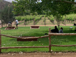 Sedona Wine Tour refxing wine tour