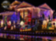Christmas Holiday Light Tour in a Execut