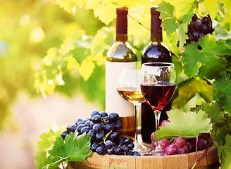 Sonoita Elgin vineyards wine tours Blasi