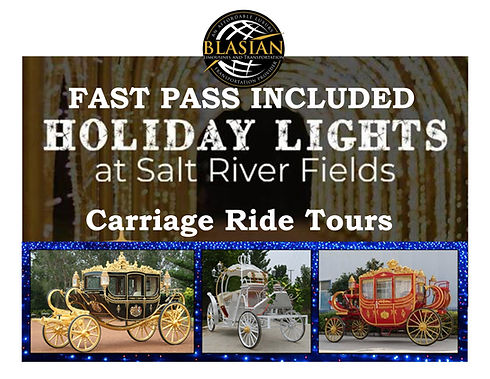Carriage Ride Holiday Lights at Salt riv