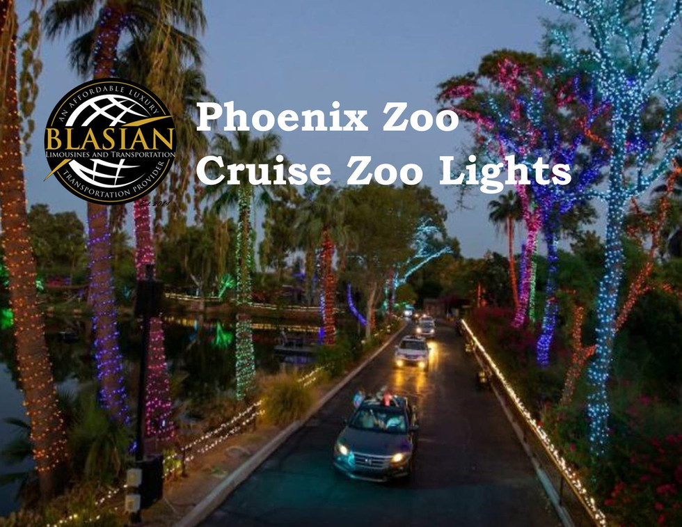 Phoenix Zoo Crusie Zoo Lights Blasian Li