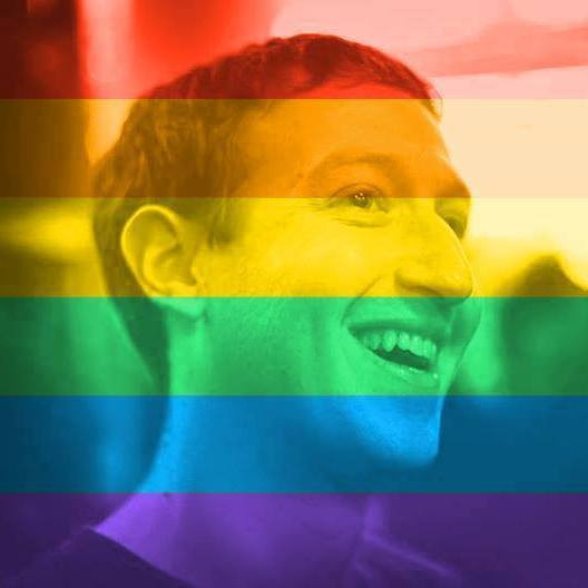 Facebook CEO Mark Zuckerberg changed his profile picture after the Supreme Court's gay marriage ruling.