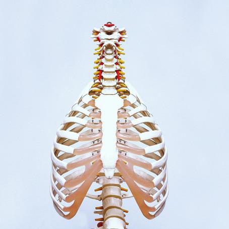 Quelle est la différence entre la kinésithérapie et l'ostéopathie ?