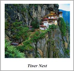 Tiger Nest